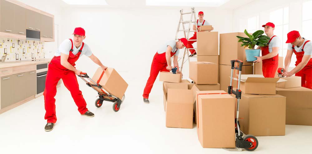Best Moving Companies In Calgary